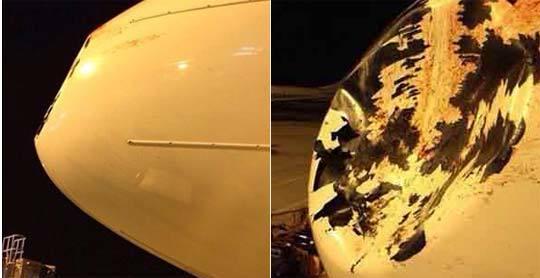 太原飞厦门航班撞鸟 机头被撞凹